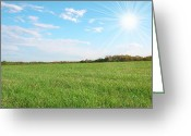 Cornfield Greeting Cards - Field Of Green Greeting Card by Darren Fisher