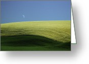Farm Fields Greeting Cards - Fields and Quarter Moon Greeting Card by Dale Stillman