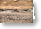 Missouri Photographer Greeting Cards - Fields of Gold Greeting Card by Jane Linders