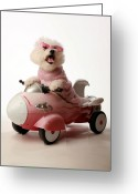 Michael Le Dray Greeting Cards - Fifi is ready for take off in her rocket car Greeting Card by Michael Ledray