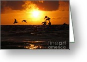 Sanibel Island Greeting Cards - Final Destination Greeting Card by LaMarre Labadie