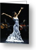 Dress Greeting Cards - Finale del Funcionamiento del Flamenco Greeting Card by Richard Young