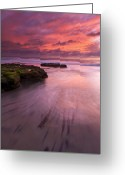 San Diego Greeting Cards - Fingers of the Tide Greeting Card by Mike  Dawson