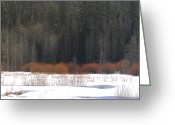 Snow On Field Greeting Cards - Fire and Ice Greeting Card by Lydia Warner Miller