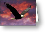 Symbols Greeting Cards - Fire Cloud and Eagle Greeting Card by Clarence Alford