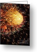 Displays Greeting Cards - Fire Flower Greeting Card by Karen Wiles