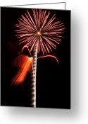 Illuminations Greeting Cards - Fire Flower Greeting Card by Kevin Munro