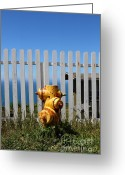 Fire Houses Greeting Cards - Fire Hydrant At The Point Reyes Lighthouse in California 7D16027 Greeting Card by Wingsdomain Art and Photography
