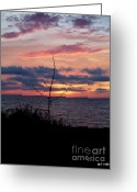 Glenn Mccurdy Greeting Cards - Fire in The Sky Greeting Card by Glenn McCurdy