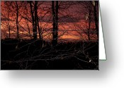 Surreal Mushrooms Greeting Cards - Fire in the Sky Greeting Card by Robert Sander