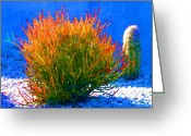 Cactus Flower Digital Art Greeting Cards - Firesticks on Blue Succulents Greeting Card by Amy Vangsgard