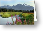 Mountain Range Greeting Cards - Fireweed Near River. Greeting Card by Dagny Willis