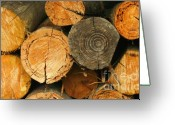 Piece Greeting Cards - Firewood Greeting Card by Yali Shi