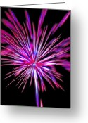 4th July Digital Art Greeting Cards - Fireworks Americana Greeting Card by Steve Ohlsen