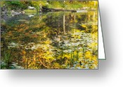 Water Lilly Greeting Cards - First Colors Greeting Card by Bill  Wakeley