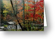 Williams Greeting Cards - First Snow Coming Down Greeting Card by Thomas R Fletcher