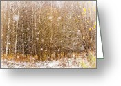 Jenny Rainbow Art Photography Greeting Cards - First Snow. Snow Flakes I Greeting Card by Jenny Rainbow