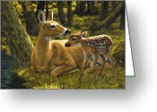 Deer Greeting Cards - First Spring - variation Greeting Card by Crista Forest