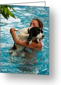 English Springer Spaniel Greeting Cards - First Swim Greeting Card by Steve Harrington