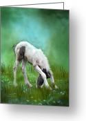 Equine Mixed Media Greeting Cards - First Taste Greeting Card by Carol Cavalaris