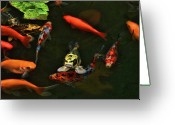 Koi Ponds Greeting Cards - Fish Frown Greeting Card by Joetta West