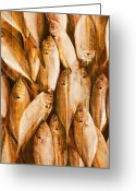 Board Fence Greeting Cards - Fish Pattern On Wood Greeting Card by Setsiri Silapasuwanchai