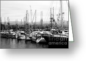 Harbors Greeting Cards - Fishing Boats . 7D8208 Greeting Card by Wingsdomain Art and Photography