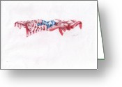 Puerto Rico Drawings Greeting Cards - Flags Greeting Card by Garrett Wright