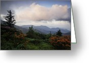 Blue Ridge Photographs Greeting Cards - Flame and Flowers Greeting Card by Rob Travis