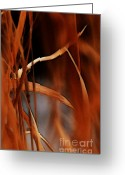 Ignite Greeting Cards - Flame Greeting Card by Linda Knorr Shafer