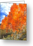 Barbara Painting Greeting Cards - Flaming Aspens Greeting Card by Barbara Jewell