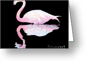 Ellenisworkshop Greeting Cards - Flamingo Greeting Card by Eric Kempson