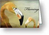 Birds Eye Greeting Cards - Flamingo Greeting Card by Steven  Michael