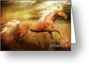 Gallop Greeting Cards - Fleet Greeting Card by Shanina Conway