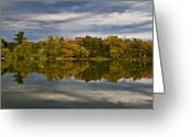 Buffalo New York Greeting Cards - Fleeting Greeting Card by Chuck Alaimo
