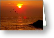 Glenn Mccurdy Greeting Cards - Flight at Sunset Greeting Card by Glenn McCurdy