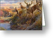 Idaho Greeting Cards - Flight Greeting Card by Steve Spencer