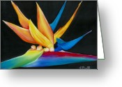 Bird Of Paradise Greeting Cards - Flight to Paradise Greeting Card by Laura Bell