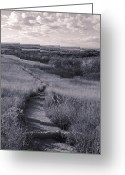 Prairie Greeting Cards - Flint Hills Vista Greeting Card by Thomas Bomstad