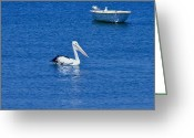 Black And White Jewelry Greeting Cards - Floaters Greeting Card by Michael Clarke JP
