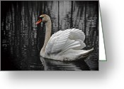 Drifting Greeting Cards - Floating Light Greeting Card by Odd Jeppesen