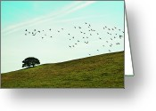 Large Group Of Animals Greeting Cards - Flock Of Birds Greeting Card by Where Photography meets Graphic Design.