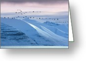 Wild Goose Greeting Cards - Flock Of Geese Flying Over Snow Covered Mountains Greeting Card by Steve Allen