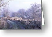 Flood Plain Greeting Cards - Flood Plain Greeting Card by Dr Keith Wheeler