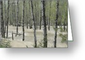 Flooding Greeting Cards - Flooding River Greeting Card by One Rude Dawg Orcutt