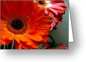 Bruster Greeting Cards - Floral Art Greeting Card by Clayton Bruster