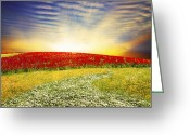 Freedom Digital Art Greeting Cards - Floral Field On Sunset Greeting Card by Setsiri Silapasuwanchai