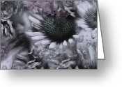 Mixed Media Photo Greeting Cards - Floral Montage No.1 Greeting Card by Bonnie Bruno