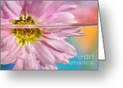 Stamen Greeting Cards - Floral n Water Art 6 Greeting Card by Kaye Menner
