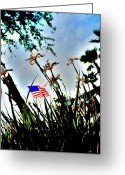 Florida Flowers Greeting Cards - Florida Flag Greeting Card by Emily Stauring